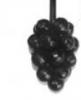 Виноград (90х60)