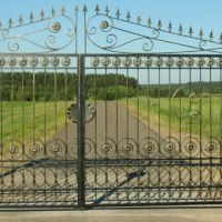 Кованые ворота с кованной калиткой